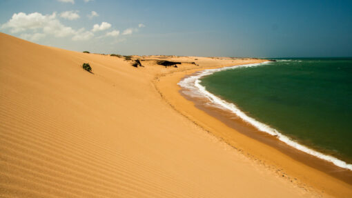 Tour the Caribbean to Punta Gallinas (Colombia)