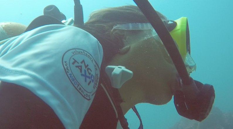 NGO Taxi Dive and Volunteer Marine Wildlife Rescue