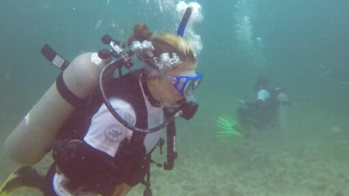Join our Dive and Volunteer Camp (Underwater Reef Reforestation at the Pacific Coast in Ecuador)