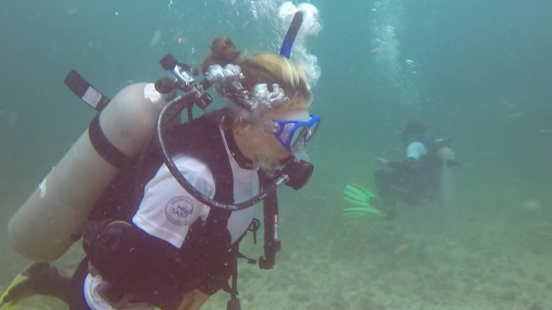 NGO Taxi Dive and Volunteer underwater