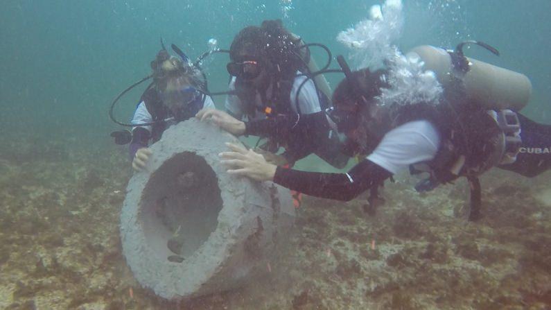 NGO Taxi Volunteer and Dive Reef Reconstruction Underwater