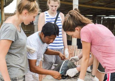 ngotaxi volunteering ecuador surfcamp-5