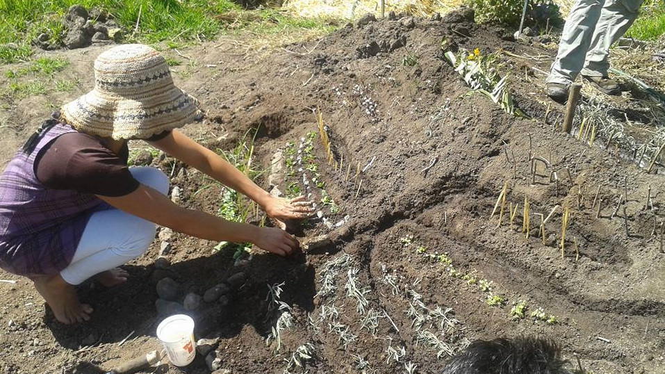 Participate in a 4 week Intensive Permaculture Course and Learn New Skills to Change the World for the Better (Ecuador)