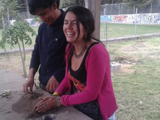 Learn New Skills by Taking Part in an Ecotourism Internship on a Sustainable Permaculture Farm (Ecuador)